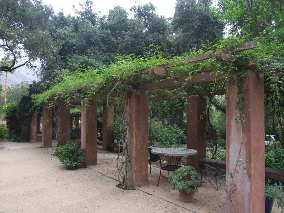 Vine-covered Arbor